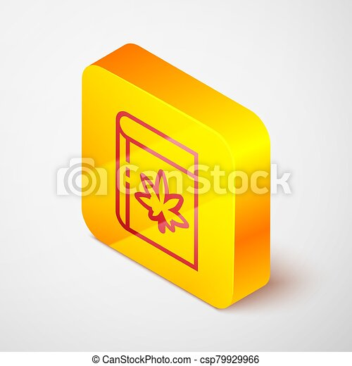 Isometric line Book and marijuana or cannabis leaf icon isolated on grey background. Hemp symbol. Yellow square button. Vector Illustration - csp79929966