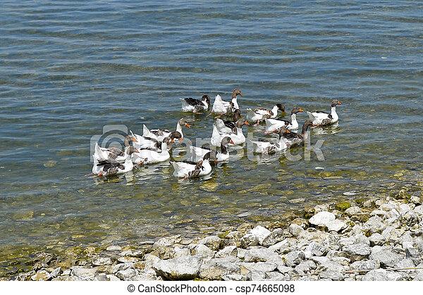 Isparta province Egirdir lake - csp74665098