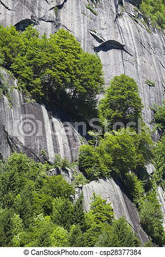 Italian Alps in Summer - csp28377384