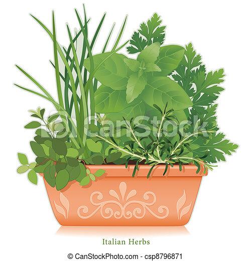 Italian Herb Garden, Clay Flowerpot - csp8796871