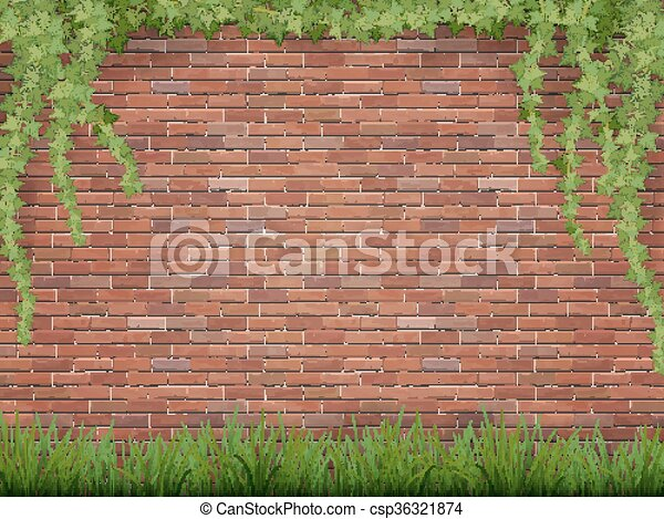 ivy and grass on brick wall background - csp36321874