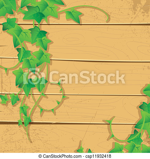 Ivy back - csp11932418