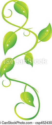 ivy - csp4524308