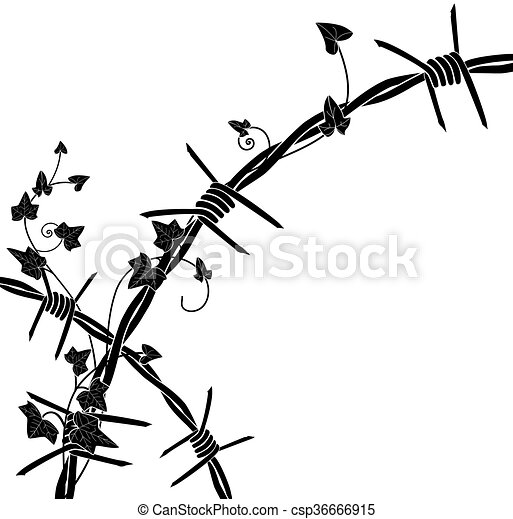 ivy with barbed wire vector illustration with barbed wire vector rh canstockphoto com barbed wire clipart circle barbed wire clip art borders