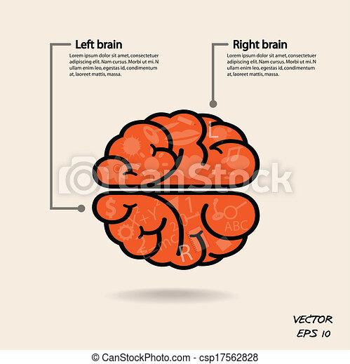 Simbolo cerebral izquierdo y derecho, signo de creatividad, símbolo de negocios, conocimiento y icono educativo - csp17562828