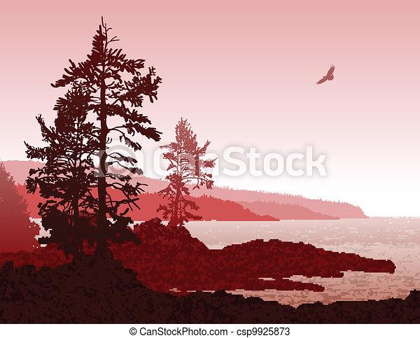 jésus-christ, île, côte, vancouver, ouest, paysage - csp9925873