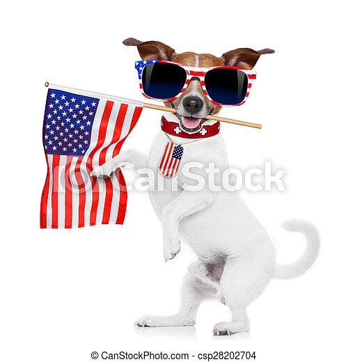 július, kutya, 4 - csp28202704