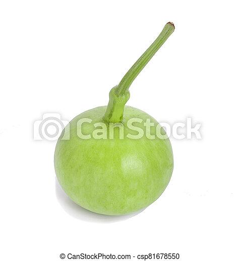 jadło, zielona roślina, calabashs, isolated., zdrowy - csp81678550