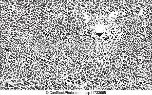 Jaguar skin background - csp11733665
