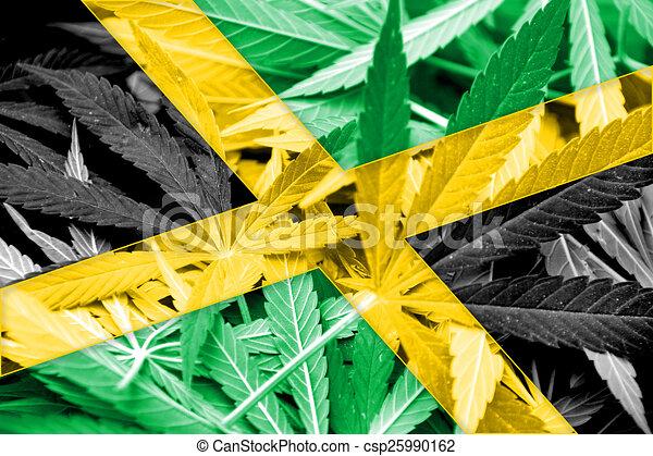 jamaika, legalization, hintergrund., marihuanaarzneimittel, cannabis, fahne, policy. - csp25990162