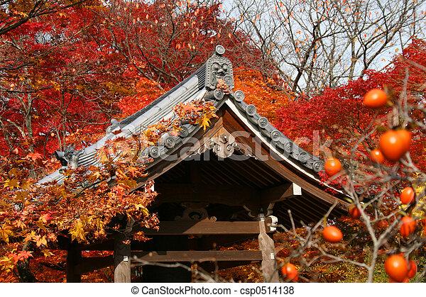 Japan autumn - csp0514138