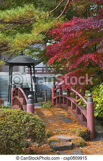 Japanese bridge - csp0809915