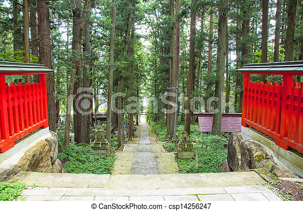 Japanese Forest - csp14256247