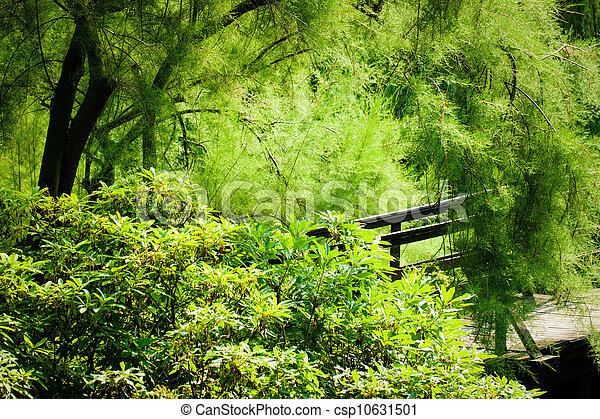 Japanese Garden Bridge - csp10631501