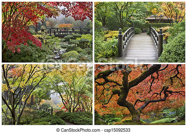 Japanese Garden in the Fall Collage - csp15092533