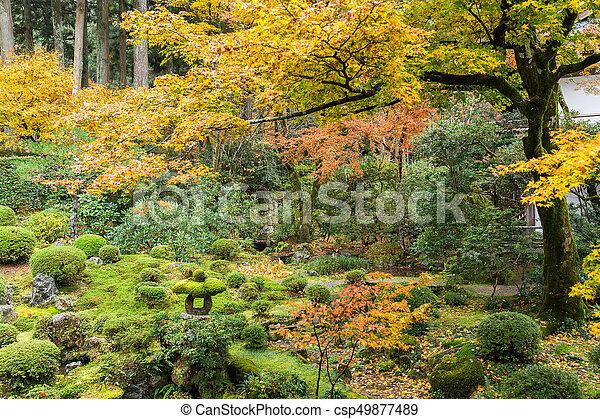 Japanese garden - csp49877489