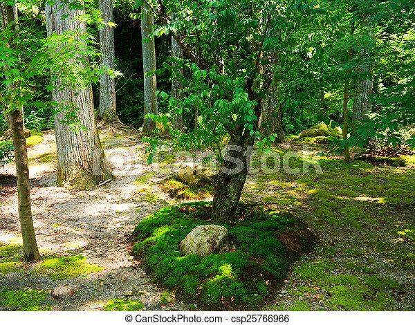 Japanese garden - csp25766966