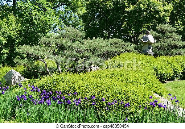 Japanese Garden - csp48350454
