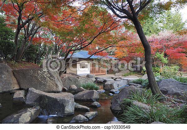 Japanese garden - csp10330549