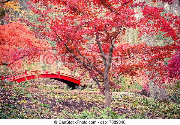 Japanese Garden - csp17089340