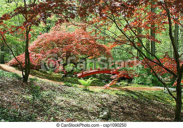 Japanese Garden - csp1090250