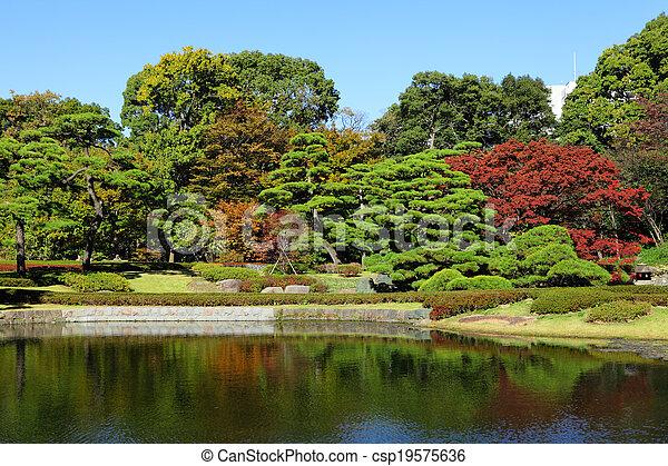 Japanese garden - csp19575636
