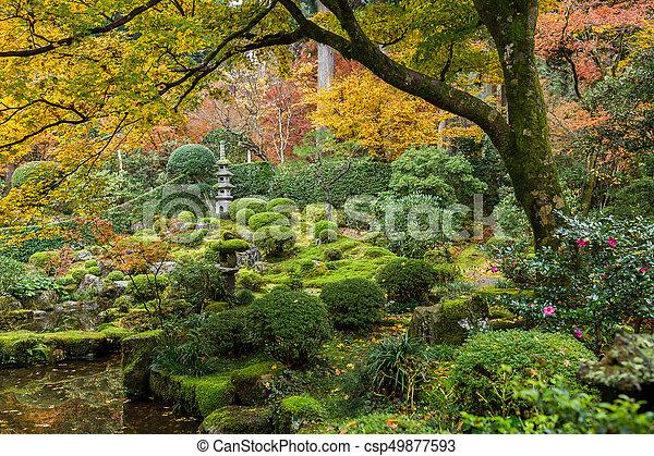 Japanese garden with autuman maple tree - csp49877593