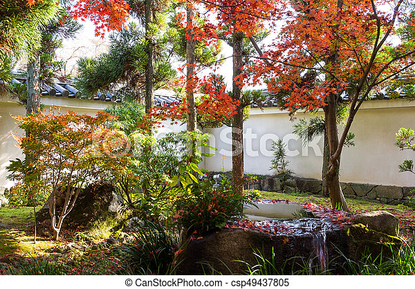 Japanese garden with red maple foliage - csp49437805