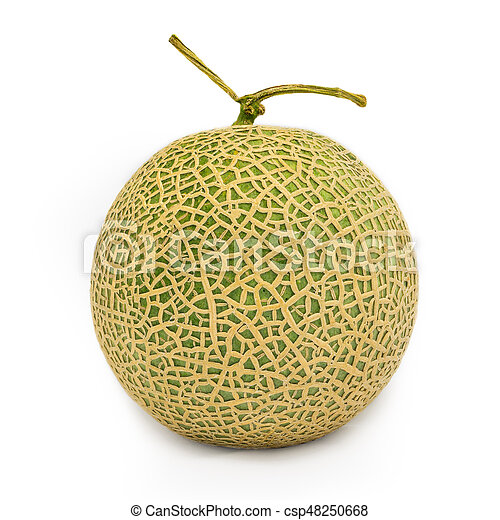 Japanese Melon Or Cantaloupe Isolated On White Studio Shot Of Japanese Melon Or Cantaloupe Isolated On White Background Canstock Galia melon and charentais belong to this category. https www canstockphoto com japanese melon or cantaloupe isolated on 48250668 html