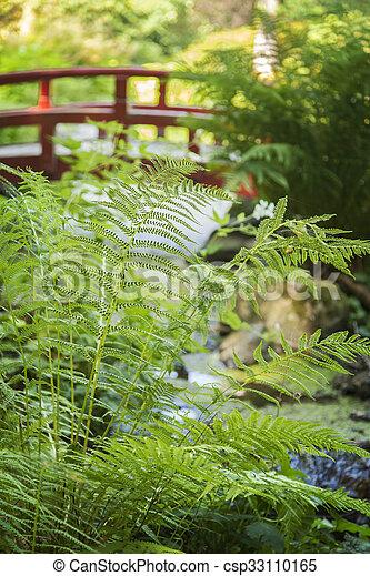 Japanese style garden - csp33110165