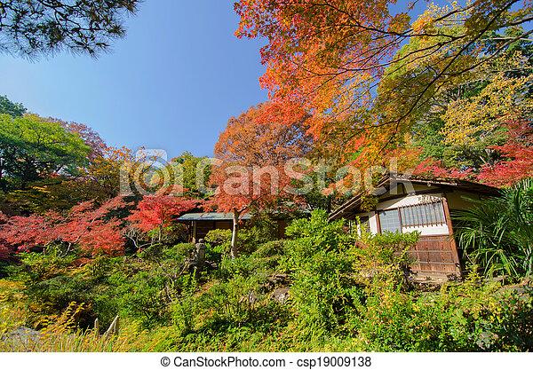 Japanese Tradiotional House Againts Garden - csp19009138