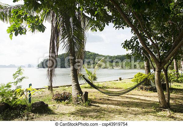 Jardín, ahorcadura, árboles, recurso, hamaca, palma, entre, muebles ...