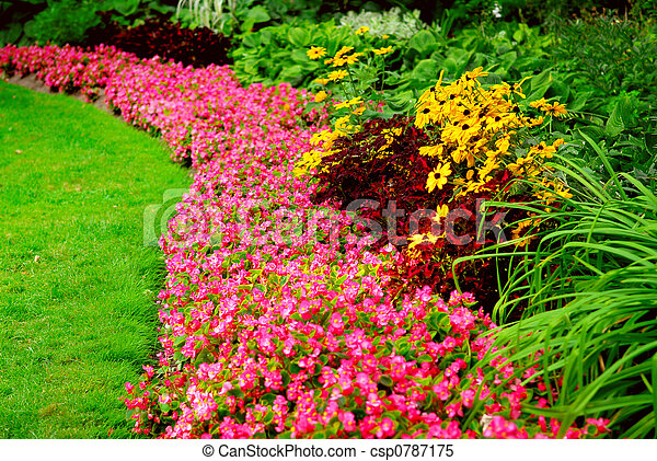 jardín - csp0787175