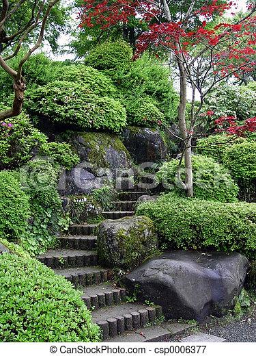 Jardín japonés - csp0006377