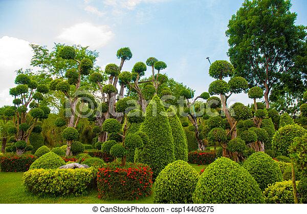 jardín - csp14408275