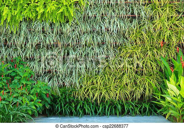 Jardín vertical - csp22688377