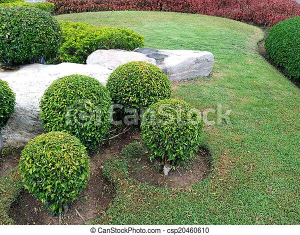 jardin anglais - csp20460610