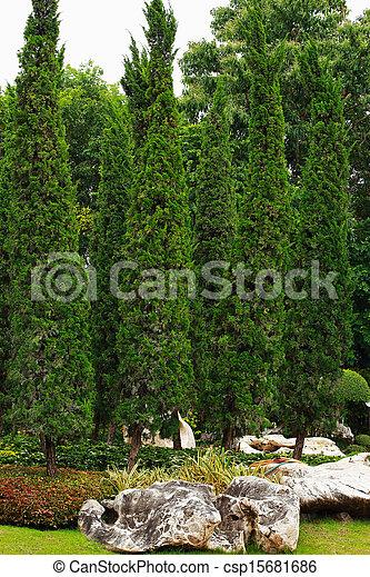 jardin anglais - csp15681686