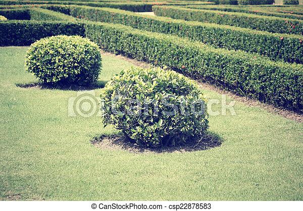 jardin anglais - csp22878583