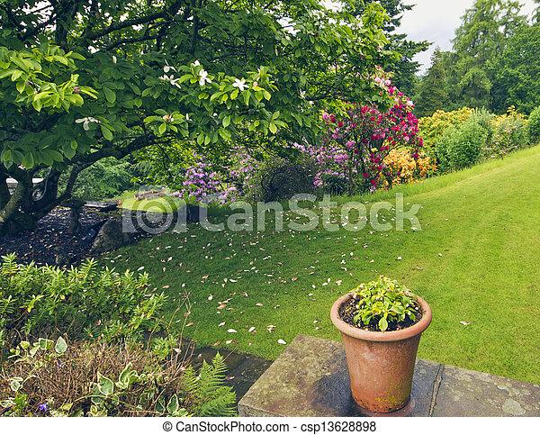 jardin anglais - csp13628898