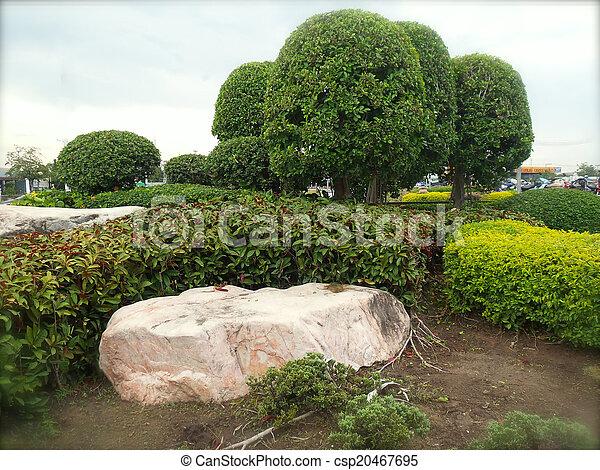 jardin anglais - csp20467695