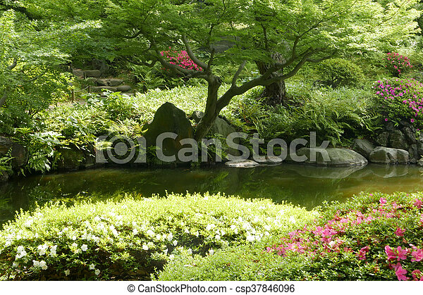 jardin fleur zen japonaise arbre tang plante fleur photographies de stock. Black Bedroom Furniture Sets. Home Design Ideas