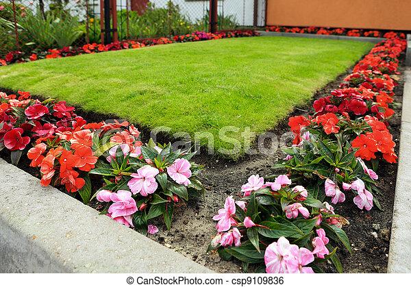 jardin - csp9109836