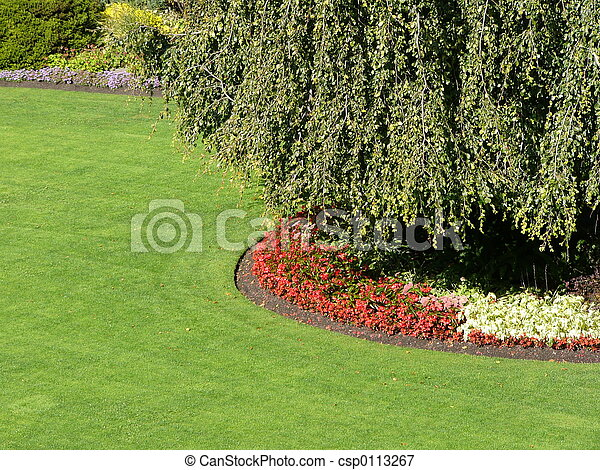 jardin - csp0113267