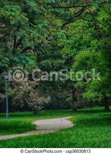 jardin - csp36030813