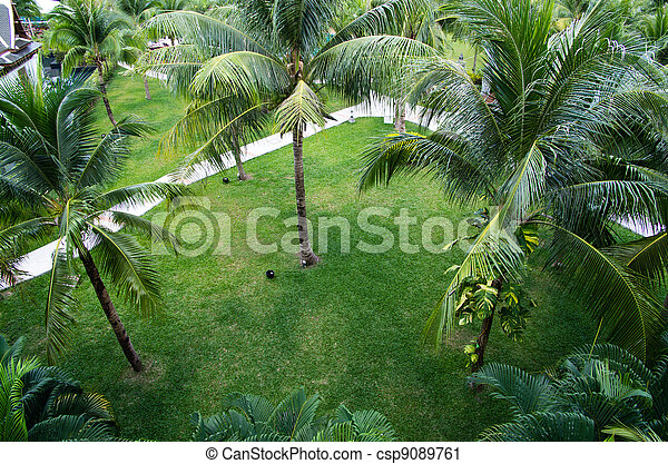 jardin - csp9089761