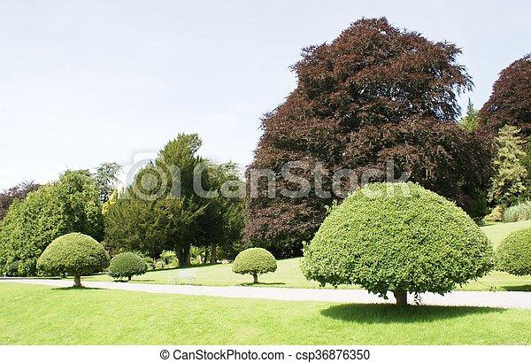 jardin - csp36876350
