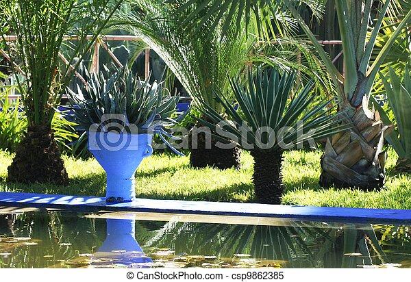 jardin - csp9862385