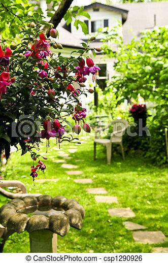 jardin maison - csp1290926