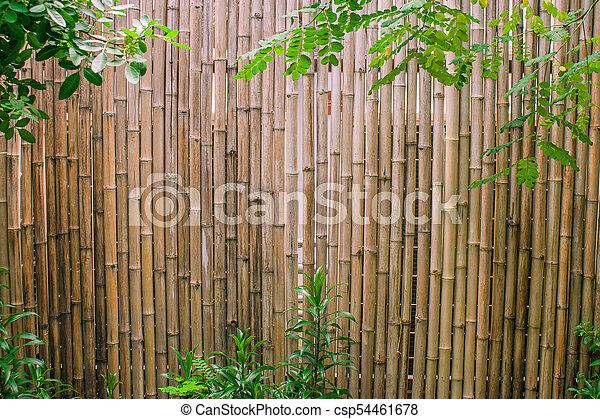 jardin, mur, feuilles, decoration., arrière-plan vert, bambou